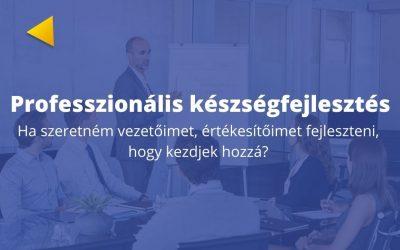 Üzleti képzés II. Készségfejlesztés professzionálisan